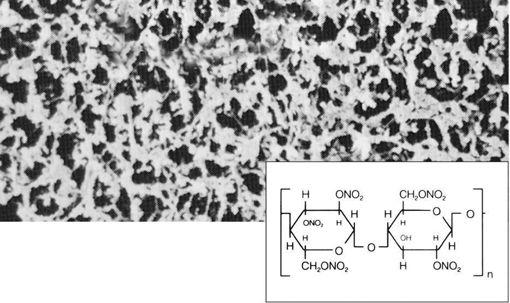 Filtro de membrana de nitrato de celulosa (CN),3 µm ,No estéril ,47 Ømm x 100u.