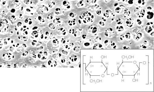 Filtro de membrana RC,no estéril, 0,2µm, 47 Ømm, x 100u.