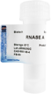 RNase A 100mg Biotech