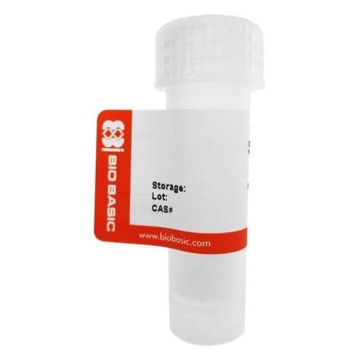 RNase A Solution (10mg/ml) x 1 ml.