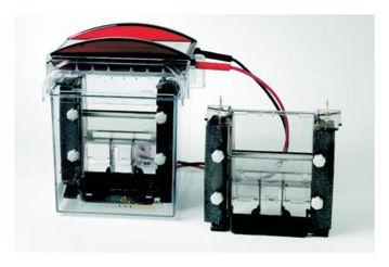 Sistema de electroforesis vertical miniVE