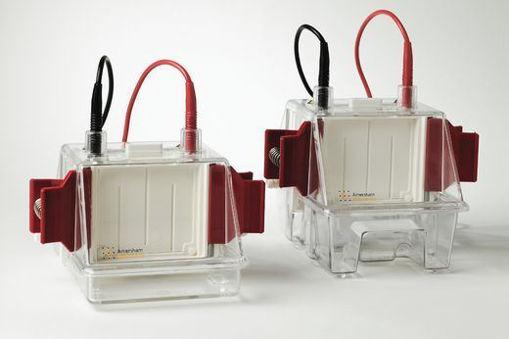 Unidad de electroforesis Minivertical SE 260 p/ 2 geles