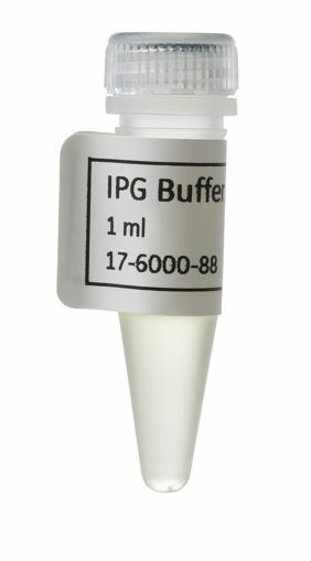 IPG Buffer rango pH 3 - 10 x 1ml