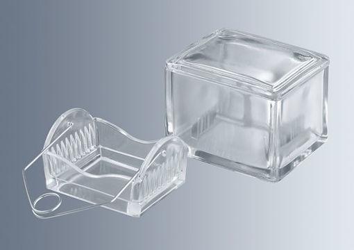 Soporte para tinción vidrio prensado