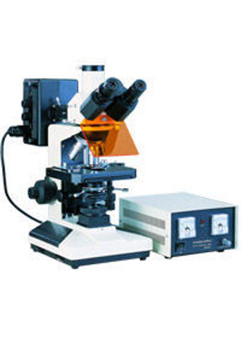 Microscopio Trinocular para Epifluorescencia L 2001 B