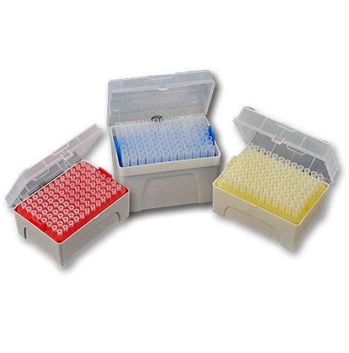 Tips con filtro estériles (RNase & DNase Free) en rack x 96u.