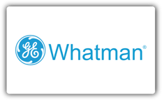 Logo GE Whatman